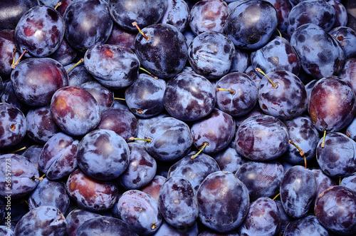 Ripe plum in the market  after harvest Fototapeta