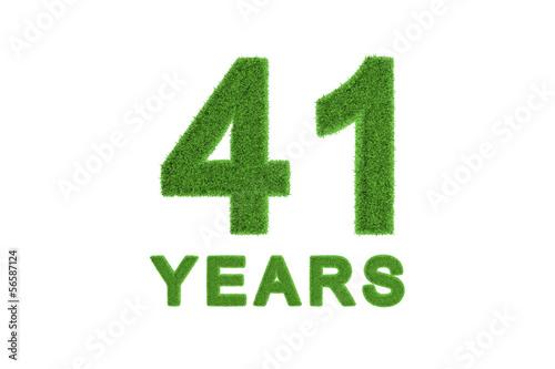 Fotografia  41 Years green grass anniversary numbers