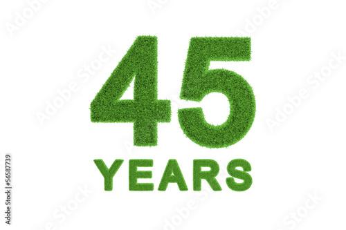 Photographie  45 Years green grass anniversary numbers