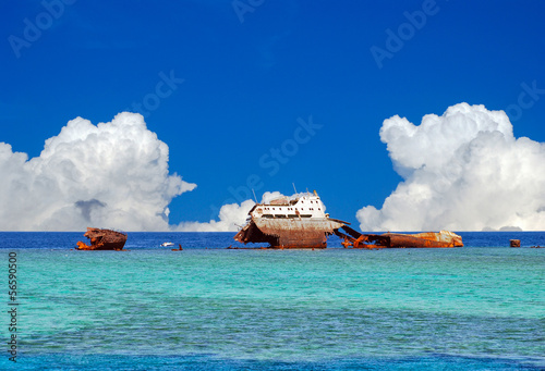 Foto op Canvas Schipbreuk A wreck appearing on the surface in the straits of Tiran