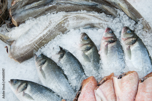 Fotobehang Vis Fresh fish on iced market display, horizontal shot