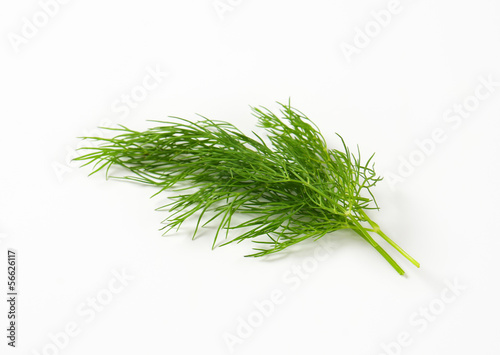 Fresh dill weed Fototapete