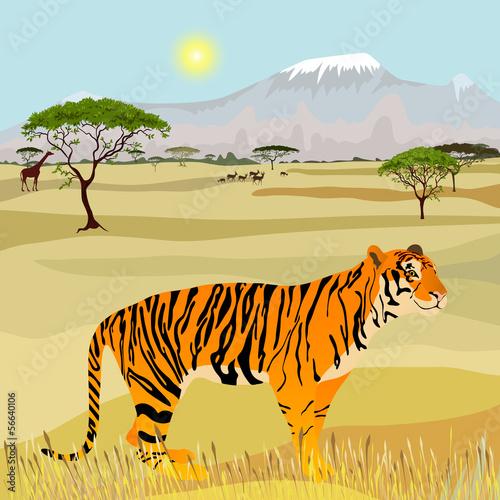 idealistyczny-krajobraz-afrykanskiej-gory-z-tygrysem