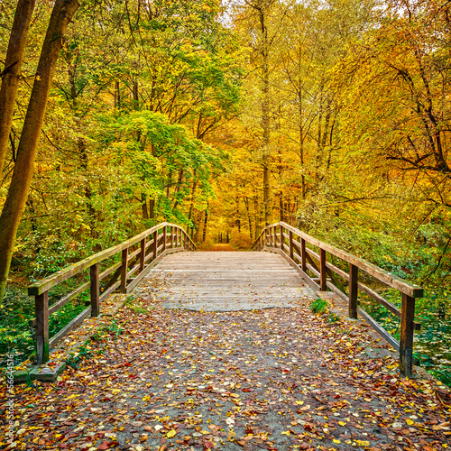 In de dag Bruggen Bridge in autumn park