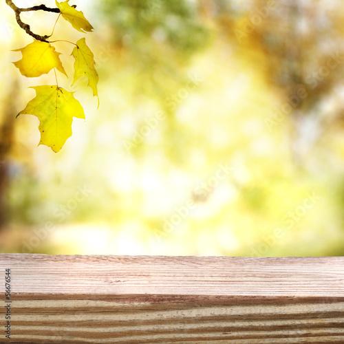 Fototapeta Autumn sky and foliage with aged wooden boards obraz na płótnie