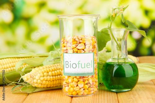 Photo Conceptual photo of bio fuel.  On bright background