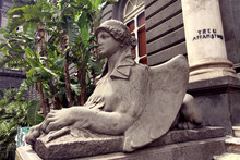 Federico II University Of Naples Sphinx