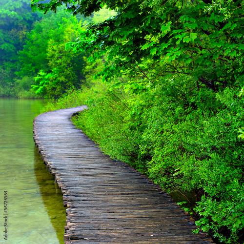 Fototapety, obrazy: Boardwalk in the park