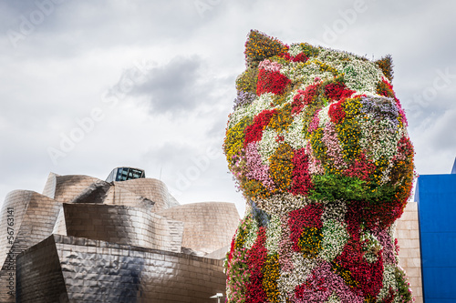 Floral dog in Bilbao