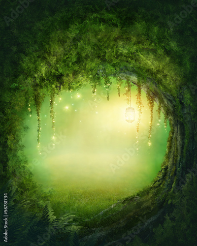 Canvas Print Enchanted forest