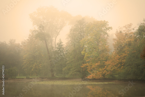 Moody autumn morning in a forest park with a calm pond water #56794553