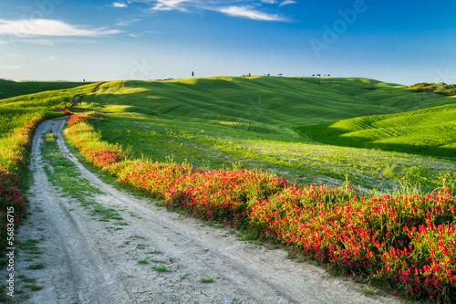 piekny-widok-zieleni-pola-i-laki-przy-zmierzchem-w-tuscany