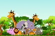 funny animal cartoon collection with tropical forest background