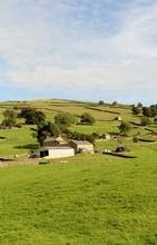 Farmland, Nidderdale, Yorkshire