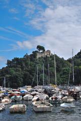 Fototapeta na wymiar la strada per Portofino