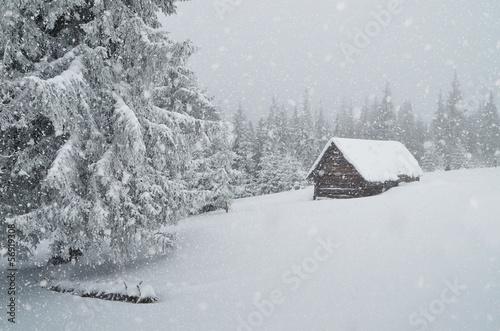 Photo Winter blizzard