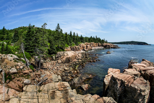 Fotografie, Obraz  Acadian rocky coast in Maine
