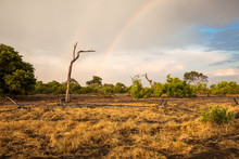 Landscape Of South Africa With A Rainbow, Botswana