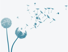 Dandelion In The Wind. Vector ...