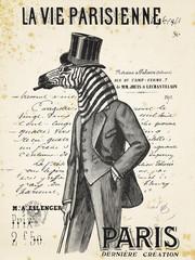 Panel Szklany Podświetlane Zebry La Vie Parisienne