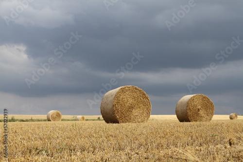 Foto op Aluminium Blauw Straw Bales under a Grey Sky in Wallonia