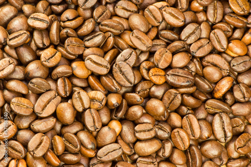 Fotografie, Obraz  Fine selected roasted coffee beans background