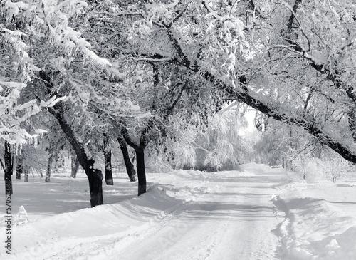 park-zimowy-krajobrazy