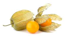 Physalis Fruit Isolated On Whi...