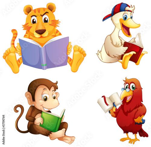 cztery-zwierzeta-czytajace