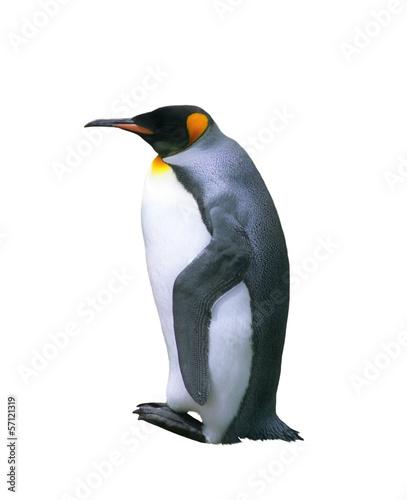 Papiers peints Pingouin Isolated emperor penguin