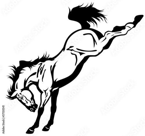 Fototapeta bucking horse obraz