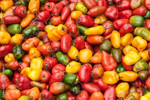 Fototapety, obrazy: Sweet peppers