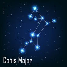 """The Constellation """" Canis Major"""" Star In The Night Sky. Vector I"""