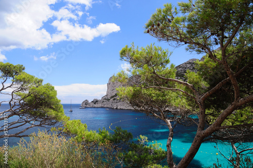 Spoed Foto op Canvas Grijze traf. Calanques of Port Pin in Cassis in France