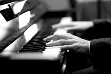 Pianist Black And White