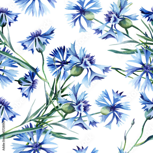 Cornflowers Seamless Pattern