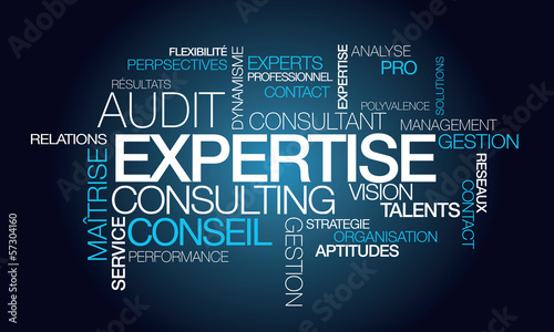 Expertise audit conseil consultant tagcloud mots illustration Canvas Print
