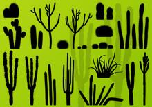 Desert Cactus Plants Wild Natu...