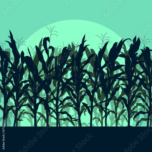 Foto op Canvas Groene koraal Corn field detailed countryside landscape illustration backgroun