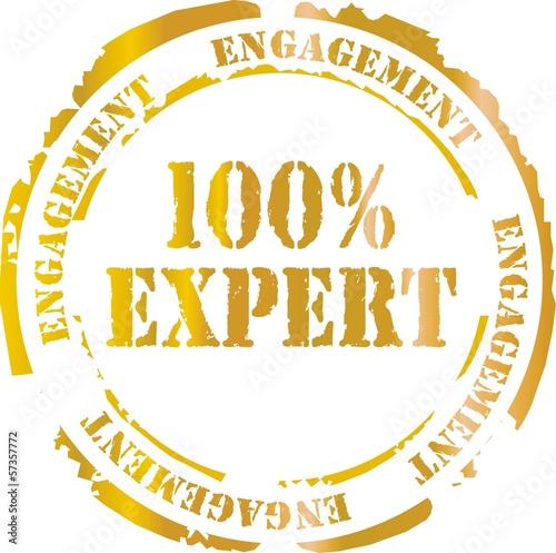 Láminas  tampon 100% expert