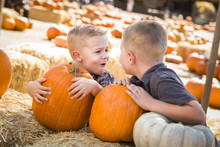 Two Boys At The Pumpkin Patch ...