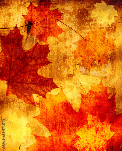 Grunge background with autumn leaves - 57422136