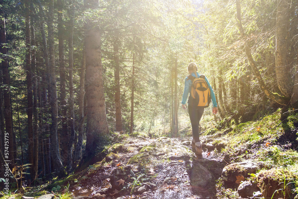 Fototapety, obrazy: Woman hiking in the forest