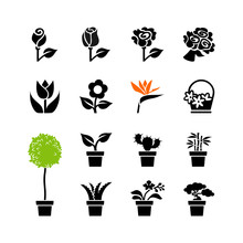Web Icon Set -flowers And Potted Plants In Pots