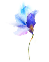 Watercolor Blue Flower