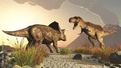 Photo  triceratops and tyrex tyrannosaurus rex
