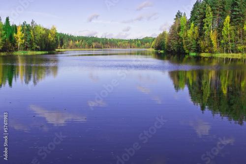 Fototapeta forest Lake obraz na płótnie