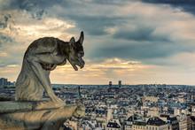 Gargoyle Of Notre Dame De Paris Overlooking City, Paris, France