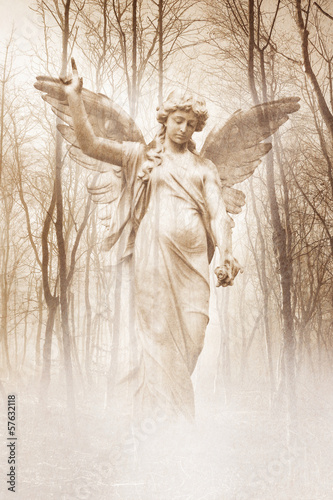 posag-aniola-w-lesie