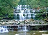 Liffey Falls - 57651989